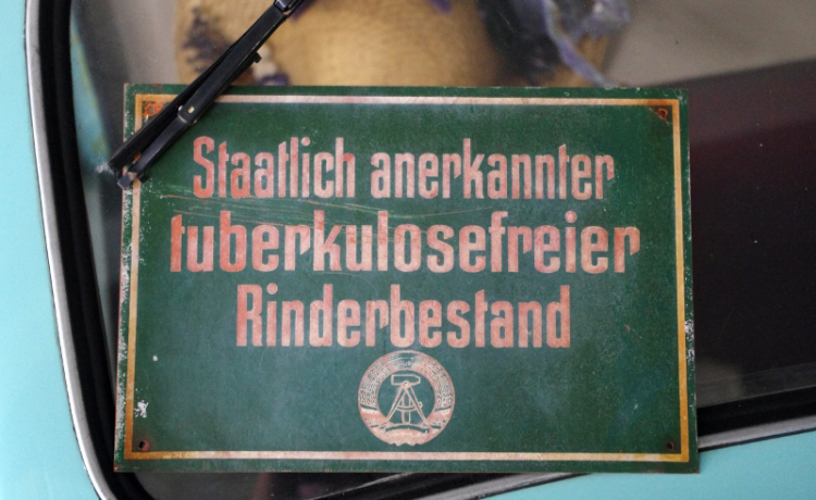 dammschenke jonsdorf speisekarte